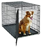Cheap Large Dog Crate | MidWest Life Stages Folding Metal Dog Crate | Divider Panel, Floor Protecting Feet, Leak-Proof Dog Tray | 42L x 28W x 31H Inches, Large Dog