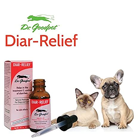 Amazon.com: Dr. goodpet diar-relief – Natural fórmula ...
