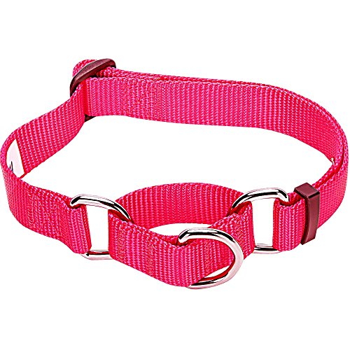 Blueberry Pet 19 Colors Safety Training Martingale Dog Collar, French Pink, Medium, Heavy Duty Nylon Adjustable Collars for Dogs