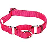 Blueberry Pet Safety Training Martingale Dog Collar, French Pink, Medium, Heavy Duty Nylon Adjustable Collars for Dogs