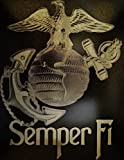 Marines Semper Fidelis (Fi) Logo Symbol Metal Art Painting