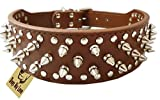 RuiChy Faux Leather Spiked Studded Dog Collar