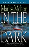 In the Dark (Navy Seal Team Twelve Book 2)