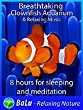 Breathtaking Clownfish Aquarium & Relaxing Music - 8 hours for sleeping and meditation