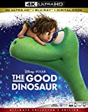 GOOD DINOSAUR, THE [Blu-ray]