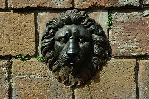 "Photography Poster - Fountain, Wall, Lion Head, Iron, 24""x16"", Gloss Finish"
