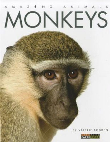 Amazing Animals: Monkeys