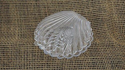 rackcrafts.com Plastic Sea Shells Scallop Concha Party Favor Decoration Box Wedding Clear White (Medium - Clear)