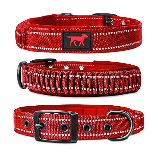 Heavy Duty Dog Collar With Handle | Ballistic Nylon Heavy Duty Collar | Padded Reflective Dog Collar With Adjustable Stainless Steel Hardware | Easy Sizing for All Breeds (Small, March Red)