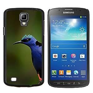 EJOOY---Cubierta de la caja de protección para la piel dura ** Samsung Galaxy S4 Active i9295 ** --colorido naturaleza pájaro azul primavera verano
