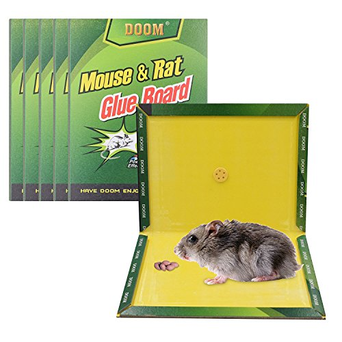Mouse Trap 5 Pack Mouse And Rat Glue Boards Mouse Glue