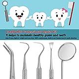 Candure Dental Tools Kit 5 Pcs Oral Care Dental