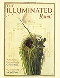img - for The Illuminated Rumi book / textbook / text book