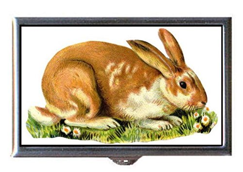 Victorian Bunny Rabbit Nibbles Flowers; Sweet Decorative Pill Box Maintenance Nibbles