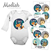 Modish Labels, 12 Monthly Baby Stickers, Baby Boy, Woodland, Baby Month Stickers, Fox, Bear, Hedgehog, Owl, First Year Stickers, Baby Book Keepsake, Photo Prop, Baby Shower Gift