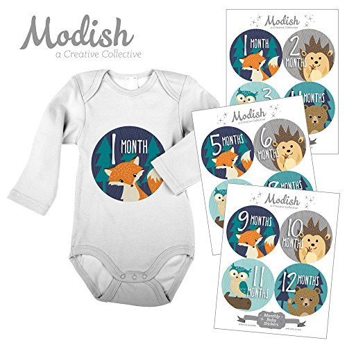 Modish Labels, 12 Monthly Baby Stickers, Baby Boy, Woodland, Baby Month Stickers, Fox, Bear, Hedgehog, Owl, First Year Stickers, Baby Book Keepsake, Photo Prop, Baby Shower Gift by Modish Labels