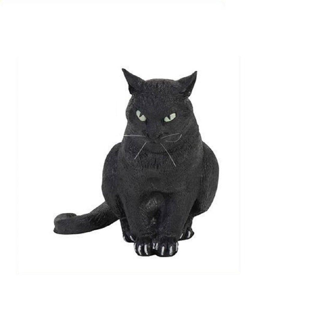 黒ネコ B00761RXII黒ネコ B00761RXII, タンバチョウ:43d49813 --- fancycertifieds.xyz