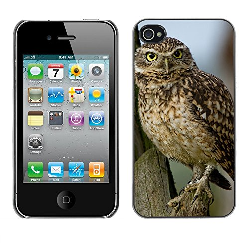 Premio Sottile Slim Cassa Custodia Case Cover Shell // F00017164 Petite chouette // Apple iPhone 4 4S 4G