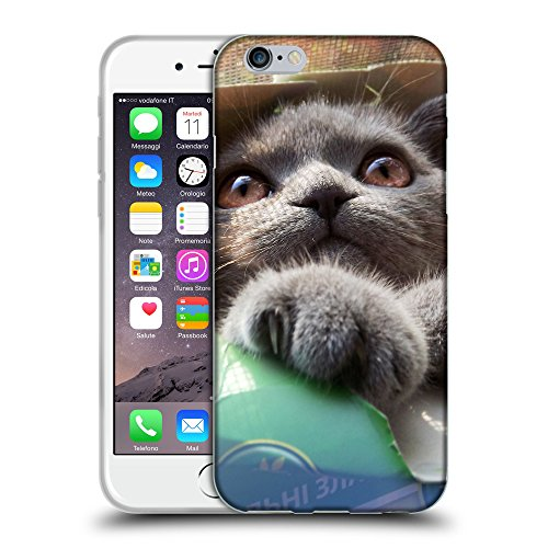 """Just Phone Cases Coque de Protection TPU Silicone Case pour // V00004249 chaton coincé dans la boîte de papier // Apple iPhone 6 6S 6G PLUS 5.5"""""""