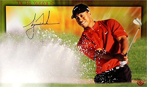 (Tiger Woods Hand Signed Autographed 12