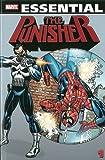Essential Punisher - Volume 1