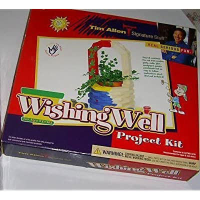 Wishing Well Project Kit: Toys & Games