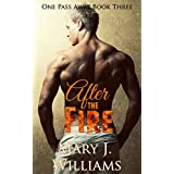 After The Fire: A Sports Romance (One Pass Away Book 3)