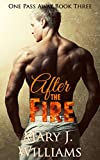 After The Fire: Second Chance Sports Romance (One Pass Away Book 3)