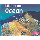 Life in an Ocean (Living in a Biome)