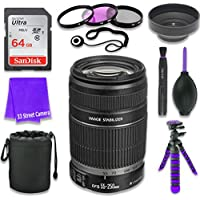 Canon EF-S 55–250mm f/4–5.6 IS II Lens for Canon DSLR Cameras & SanDisk 64GB Class 10 Memory Card + Complete Accessory Kit (11 Items)