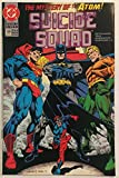 img - for Suicide Squad #59 (The Mystery of the Atom) book / textbook / text book