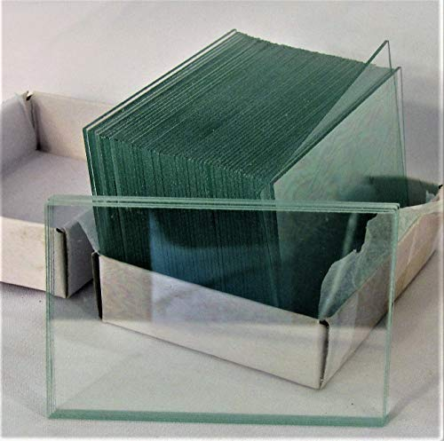 Clear Glass Slides - Large Blank Microscope Slides 50 x 75 mm 2