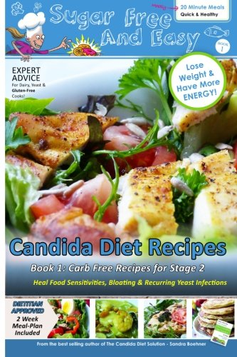 Sugar Free Easy Candida Recipes product image