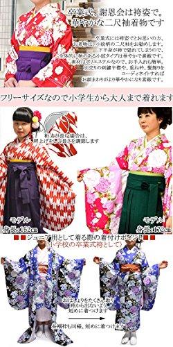 卒業式 中振袖 女性レディース二尺袖小紋着物 5タイプ/