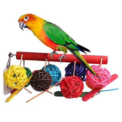 NNDA CO Colorful Pet Parrot Toy
