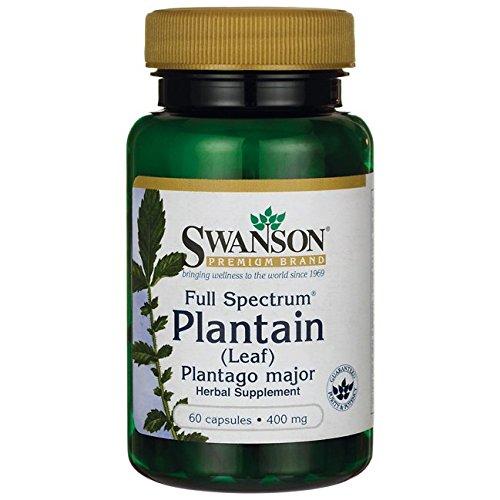 (Swanson Full Spectrum Plantain (Leaf) Plantago Major 400 Milligrams 60 Capsules)
