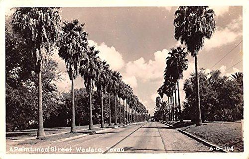 Palm Line Street Weslaco, Texas postcard