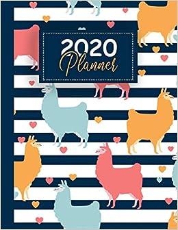 Fun Holiday Calendar 2020 2020 Planner: Weekly Monthly 2020 Planner Organizer, Calendar