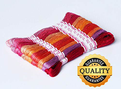 LE PAON DMC Floss Pack, 24-Pack,DMC color cotton thread , 8m embroidery thread for kids DIY Bracelet Kit ,Hand knitting line, Braided wire(COLOR 1) (Embroidery Color Chart)