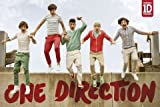 (24x36) One Direction Jumping Music Poster