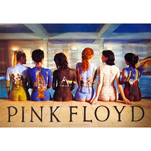 LPGI Pink Floyd Back Catalogue Fabric Poster, 30 by 40-Inch