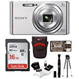 Sony DSCW830 20.1 Digital Camera with 2.7-Inch LCD (Silver) Value Kit