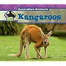 Kangaroos (Big Buddy Books: Australian Animals (Library))