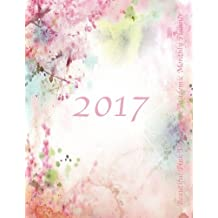 2017 Beautiful Pink Dreamscape Academic Monthly Planner: Large 8.5x11 16 Month August 2016-December 2017 Organizer