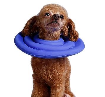 DAN Cono De Cuello Isabelino Ajustable, para Mascotas Recuperación De Cirugía O Heridas,S: Amazon.es: Deportes y aire libre