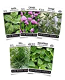 Sow Right Seeds - Herb Garden Seed Collection - Basil, Chives, Thyme, Marjoram, Dill Seeds for Planting; 5 Individual Packets