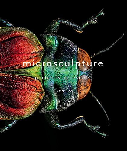 """""""You will never look at a beetle or a moth the same way again."""" --WIRED""""Art meets science to dazzling effect."""" --The GuardianMicrosculptureis a unique photographic study of insects in mind-blowing magnification that celebrates the wonders of natur..."""