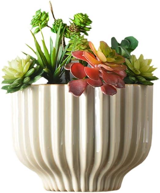 Macetas para colgar en la pared, vertical, para jardín, salón, pared, ventana, contenedor de cerámica para interiores y exteriores, para plantas, flores, hierbas de cocina, soporte suculento, 19 cm: Amazon.es: Jardín