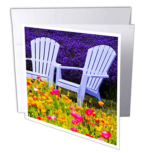 - 3dRose Danita Delimont - Scenics - USA, Washington State, Adirondack Chairs amid Lavender and Poppies - 1 Greeting Card with Envelope (gc_315207_5)