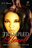 Trampled Heart: How can you mend a disregarded and wounded heart?
